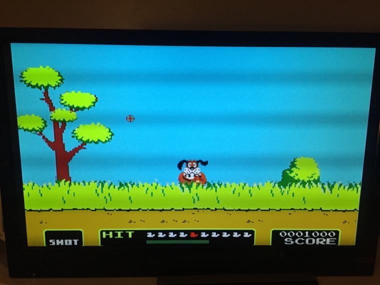 Wii Duck Hunt